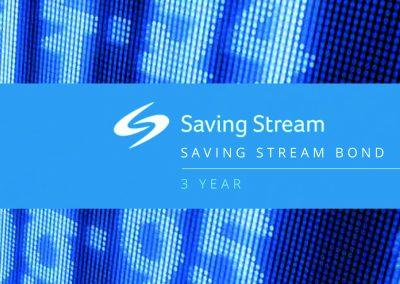 202181 Saving Stream Bond A4_Logo_web